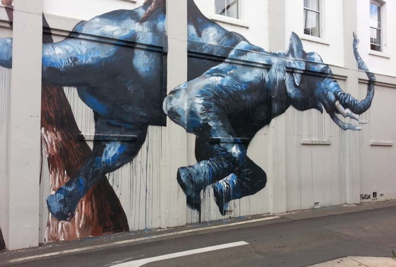 elephant streetart